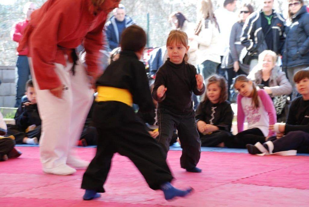wushu, sanda, kung fu, wu shu llisa, wushu lliça y también sanda en lliça, además kung fu llissa